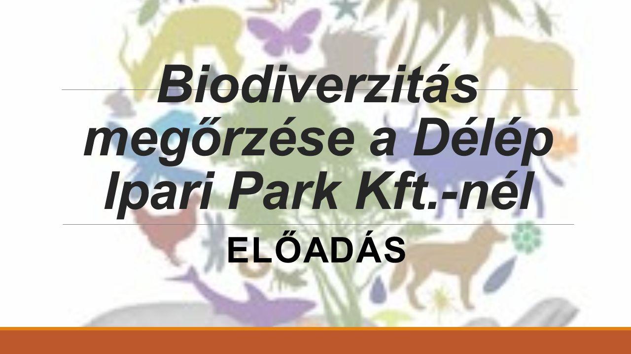 Biodiverzitás megőrzése a Délép Ipari Park Kft.-nél ELŐADÁS