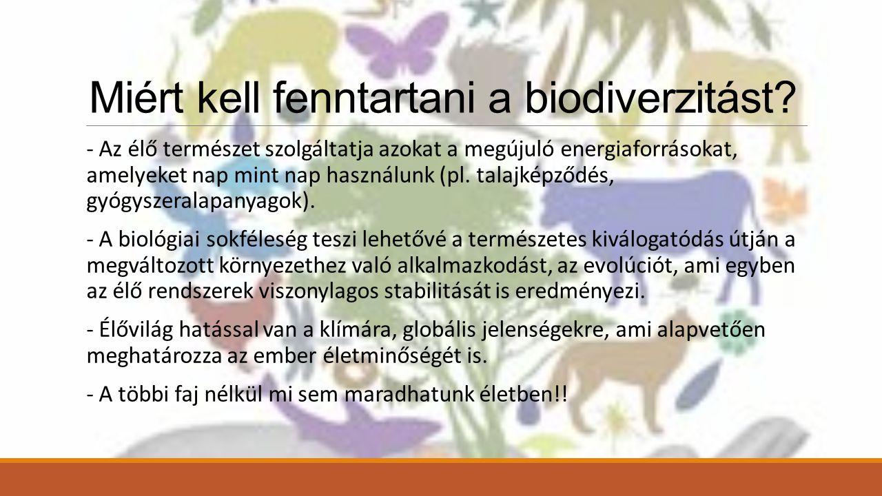 Miért kell fenntartani a biodiverzitást.