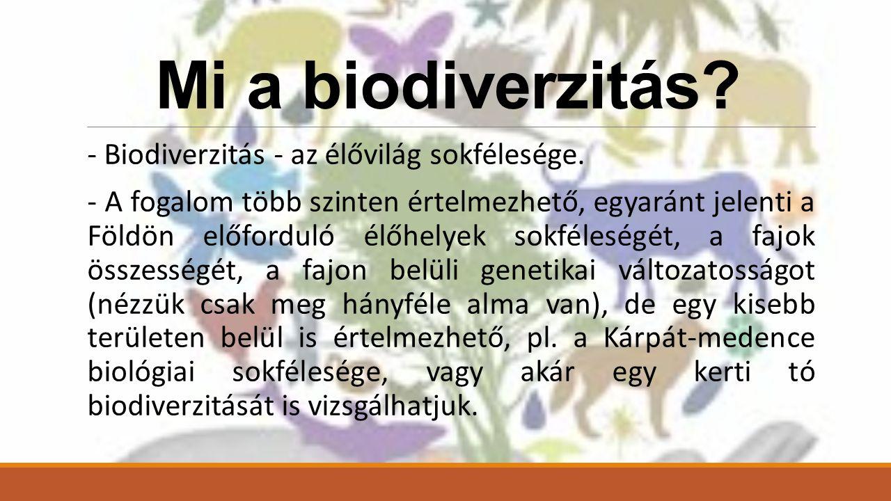 Mi a biodiverzitás.- Biodiverzitás - az élővilág sokfélesége.