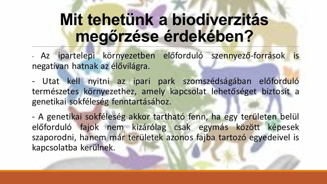Mit tehetünk a biodiverzitás megőrzése érdekében.