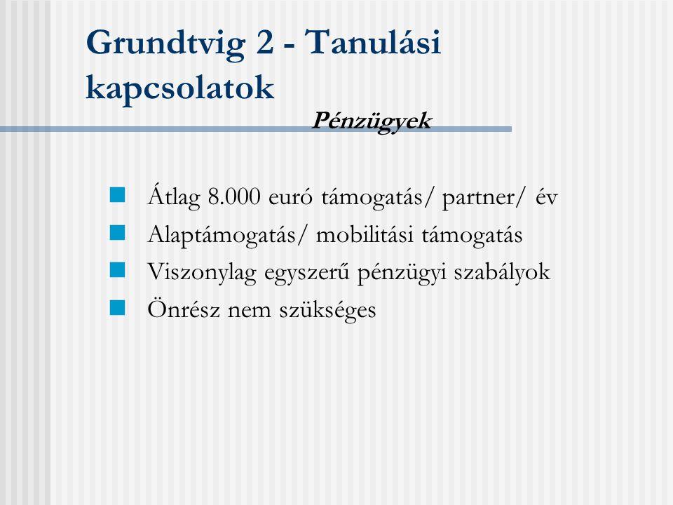Grundtvig 2 - Tanulási kapcsolatok A nemzetközi együttműködés megalapozása Projekttevékenység, projekttermék Pályázati tapasztalattal nem rendelkező intézmények Partnerek min.