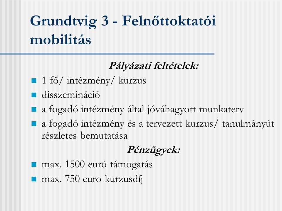Grundtvig 3 - Felnőttoktatói mobilitás Támogatott tevékenységek: 1-4 hetes külföldi kurzus, szeminárium (Comenius/ Grundtvig kurzuskatalógus) felnőttoktatási konferencia külföldi intézmény látogatása, önálló tanulmányút