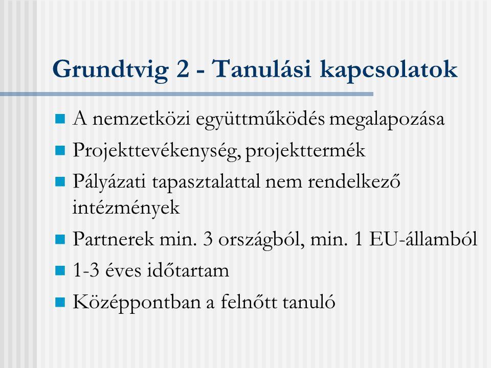Pályázati típusok Centralizált pályázatok: Együttműködési projekt (Grundtvig 1.) Hálózat (Grundtvig 4.) Decentralizált pályázatok: Felnőttoktatói mobilitás (Grundtvig 3.) Tanulási kapcsolat (Grundtvig 2.)