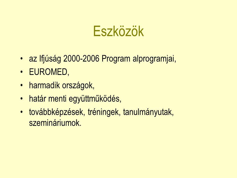 Ifjúság 2000-2006 Program Fiatalok Európáért – nemzetközi ifjúsági cserék (15-25 éveseknek) Európai Önkéntes Szolgálat (18-25 éveseknek) Ifjúsági kezdeményezés, illetve Befektetés a Jövőbe (15-25 éveseknek) Fejlesztő Projektek (ifjúsági szakembereknek és kortárs segítőknek)
