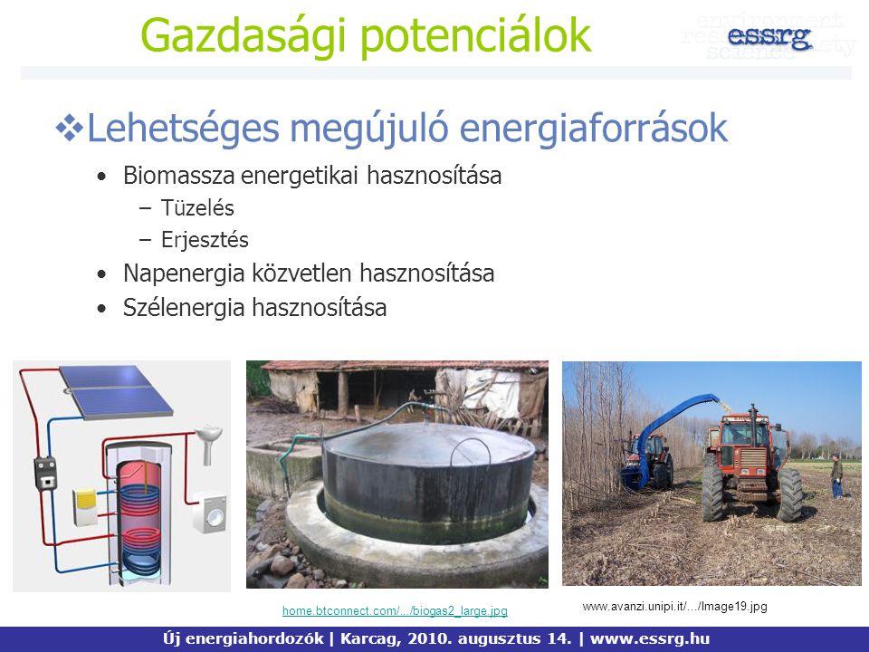 Gazdasági potenciálok  Lehetséges megújuló energiaforrások Biomassza energetikai hasznosítása –Tüzelés –Erjesztés Napenergia közvetlen hasznosítása S