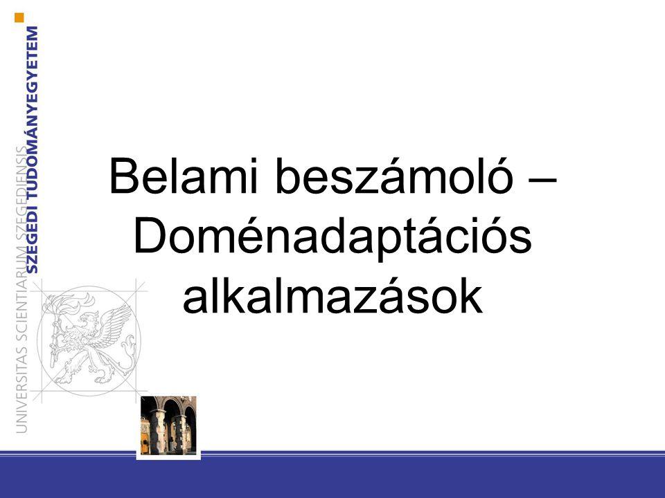 Belami beszámoló – Doménadaptációs alkalmazások