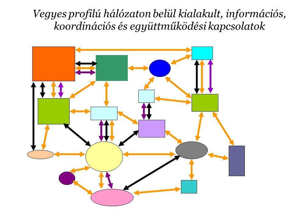 Adatbázis, adatgyűjtés Létrehoztunk egy elektronikus civil szervezeti adatbázist, amelyet folyamatosan karbantartottunk.