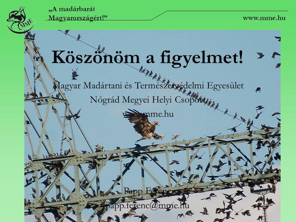 """Köszönöm a figyelmet! Papp Ferenc papp.ferenc@mme.hu Magyar Madártani és Természetvédelmi Egyesület Nógrád Megyei Helyi Csoport www.mme.hu """"A madárbar"""