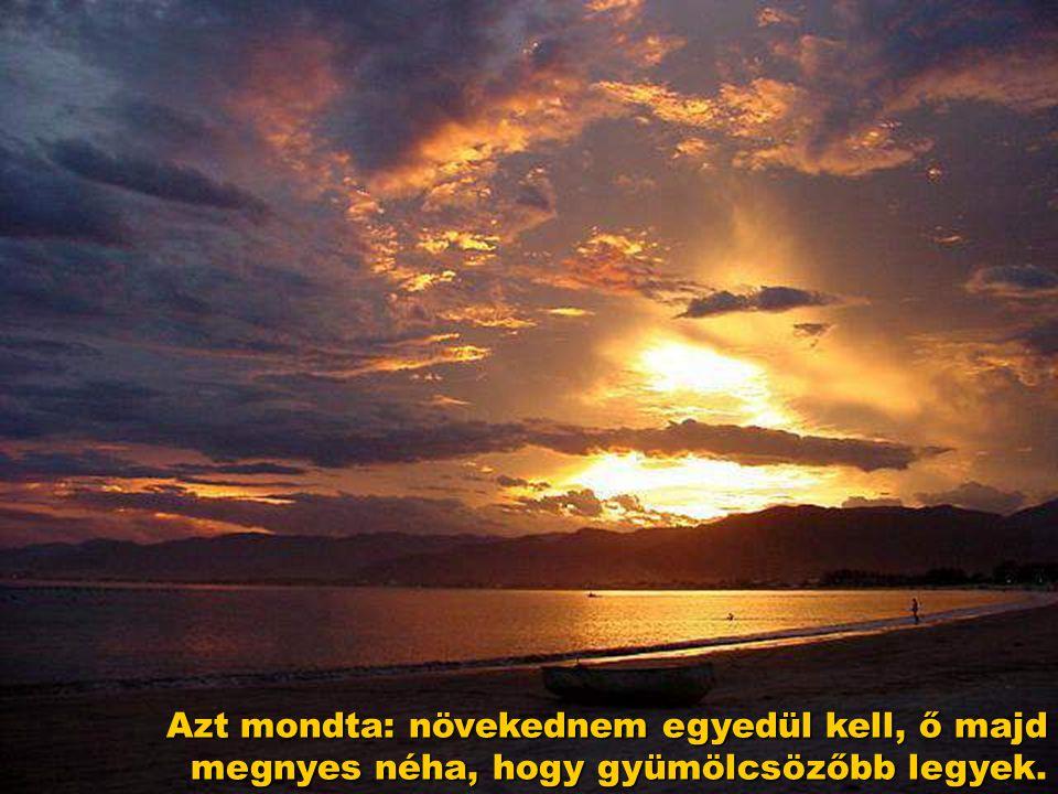 Kértem Istent, növelje nagyra lelkemet, és Isten azt felelte: Nem.