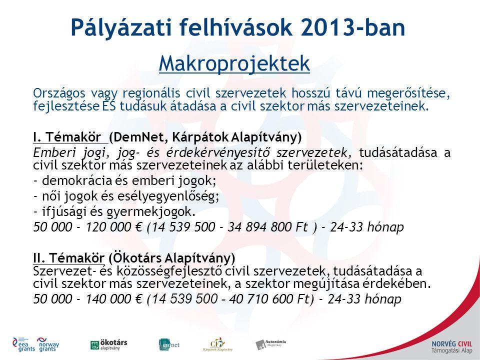Pályázati felhívások 2013-ban Országos vagy regionális civil szervezetek hosszú távú megerősítése, fejlesztése ÉS tudásuk átadása a civil szektor más