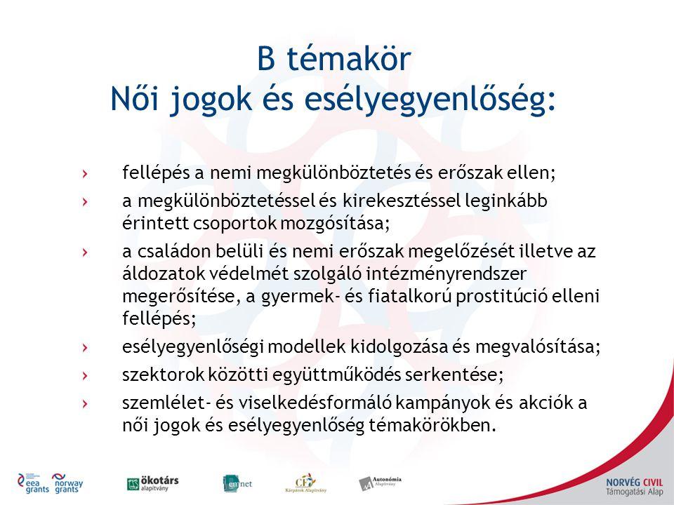 B témakör Női jogok és esélyegyenlőség: fellépés a nemi megkülönböztetés és erőszak ellen; a megkülönböztetéssel és kirekesztéssel leginkább érintett csoportok mozgósítása; a családon belüli és nemi erőszak megelőzését illetve az áldozatok védelmét szolgáló intézményrendszer megerősítése, a gyermek- és fiatalkorú prostitúció elleni fellépés; esélyegyenlőségi modellek kidolgozása és megvalósítása; szektorok közötti együttműködés serkentése; szemlélet- és viselkedésformáló kampányok és akciók a női jogok és esélyegyenlőség témakörökben.