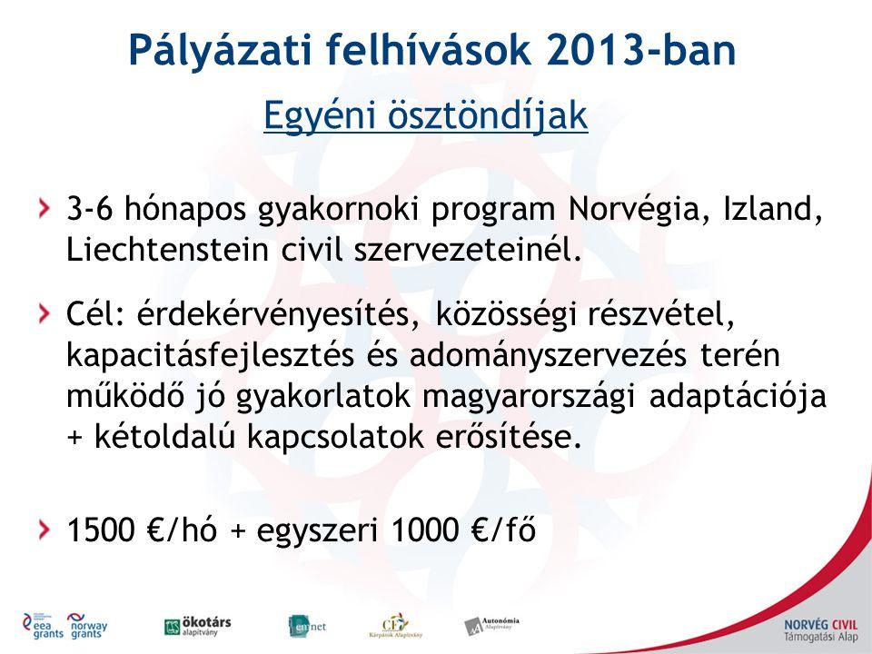 3-6 hónapos gyakornoki program Norvégia, Izland, Liechtenstein civil szervezeteinél. Cél: érdekérvényesítés, közösségi részvétel, kapacitásfejlesztés