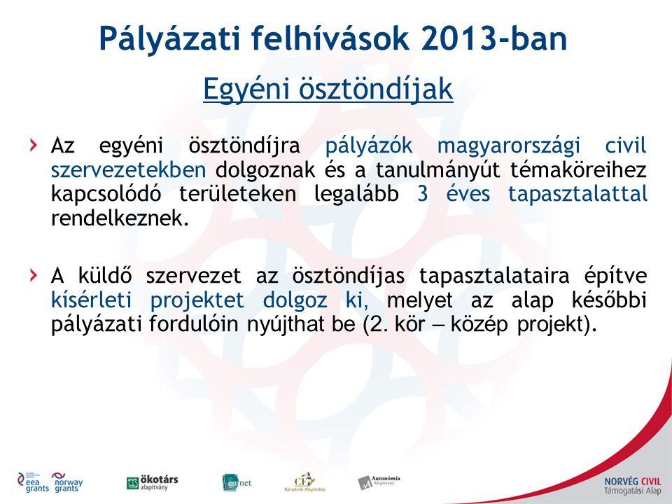 Az egyéni ösztöndíjra pályázók magyarországi civil szervezetekben dolgoznak és a tanulmányút témaköreihez kapcsolódó területeken legalább 3 éves tapasztalattal rendelkeznek.