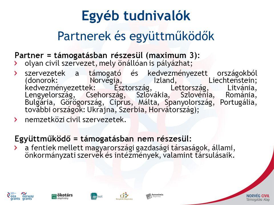 Partner = támogatásban részesül (maximum 3): olyan civil szervezet, mely önállóan is pályázhat; szervezetek a támogató és kedvezményezett országokból (donorok: Norvégia, Izland, Liechtenstein; kedvezményezettek: Észtország, Lettország, Litvánia, Lengyelország, Csehország, Szlovákia, Szlovénia, Románia, Bulgária, Görögország, Ciprus, Málta, Spanyolország, Portugália, további országok: Ukrajna, Szerbia, Horvátország); nemzetközi civil szervezetek.