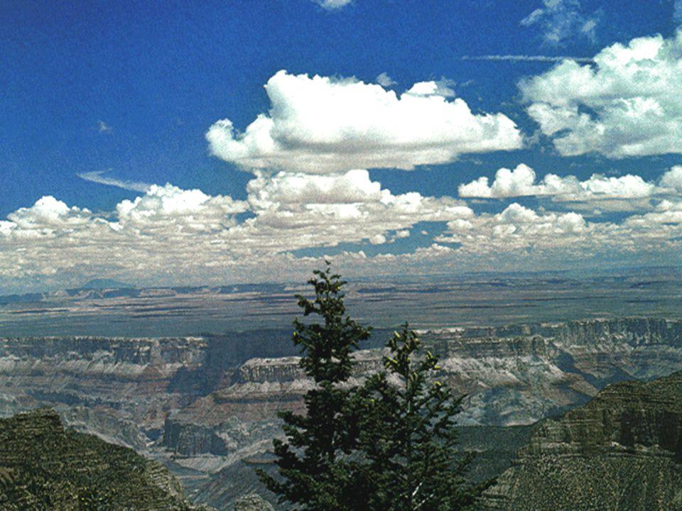 rendkívül változatosak osztályozás alak és elhelyezkedési magasság alapján cirrus=jeges stratus=réteges (nagy kiterjedésű felszálló légtömeg) cumulus=gomoly (felszálló légtömeg) nimbus=eső A felhők osztályozása