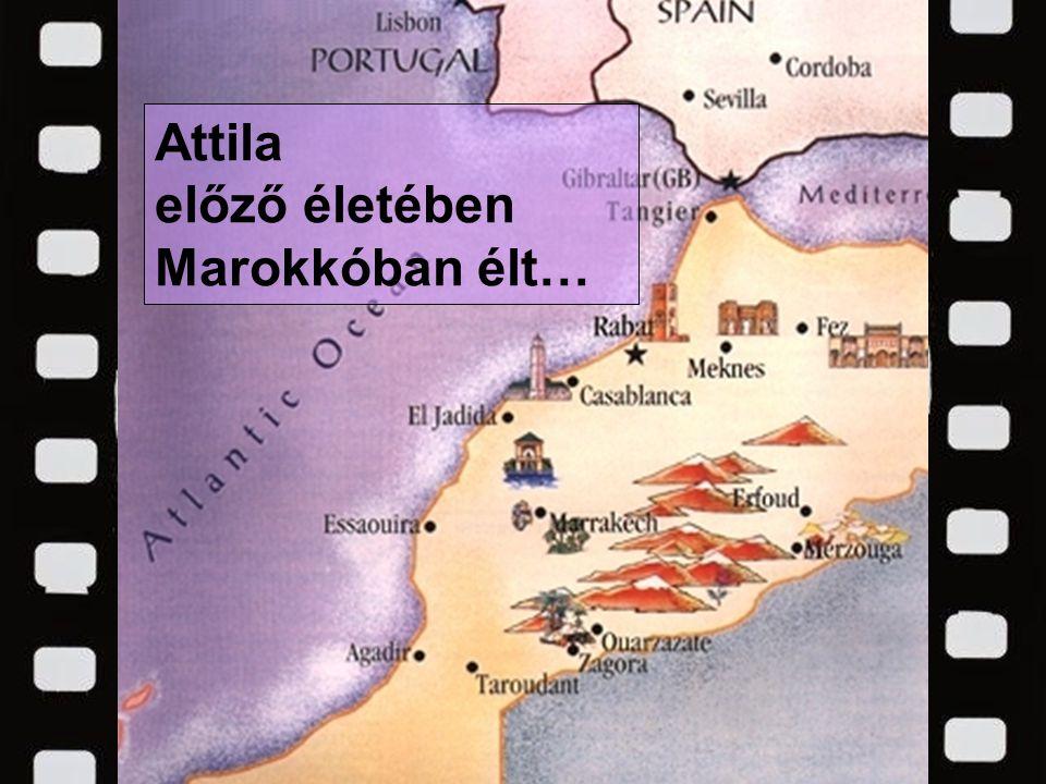 Attila előző életében Marokkóban élt…
