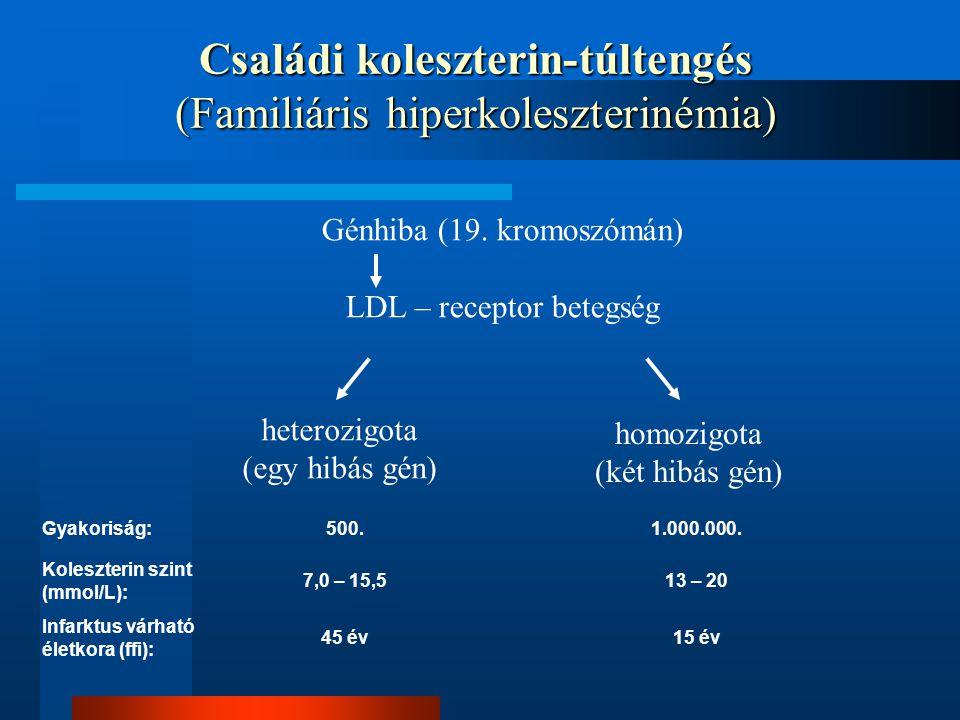 Családi koleszterin-túltengés (Familiáris hiperkoleszterinémia) Génhiba (19. kromoszómán) LDL – receptor betegség heterozigota (egy hibás gén) homozig