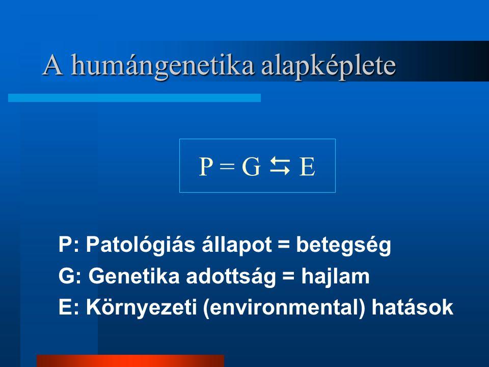 A humángenetika alapképlete P: Patológiás állapot = betegség G: Genetika adottság = hajlam E: Környezeti (environmental) hatások P = G  E
