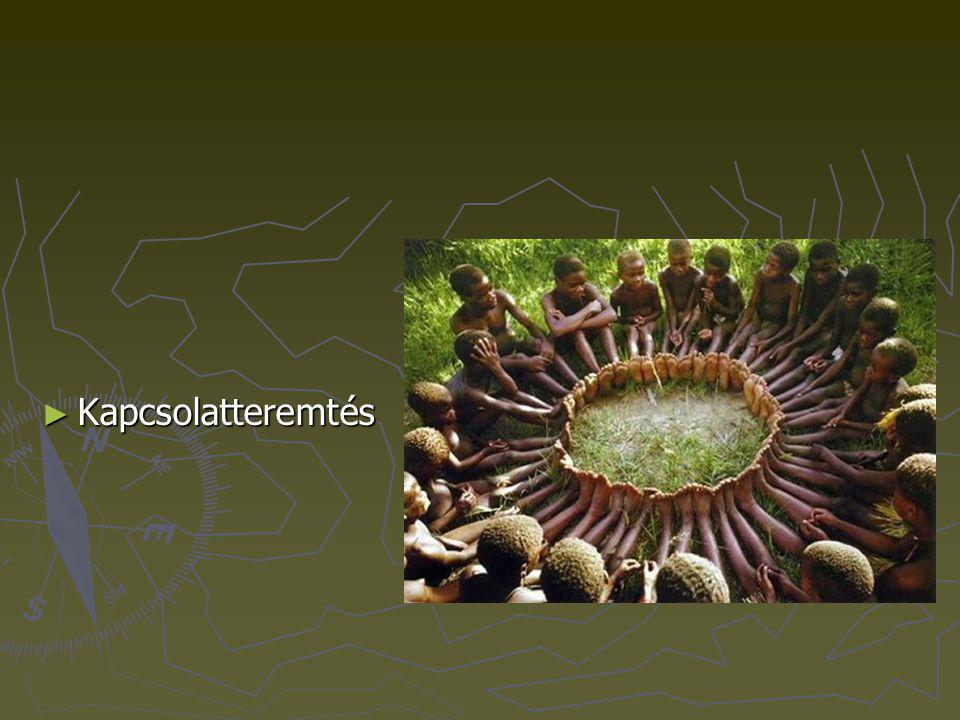 ► Az együttműködések facilitálása
