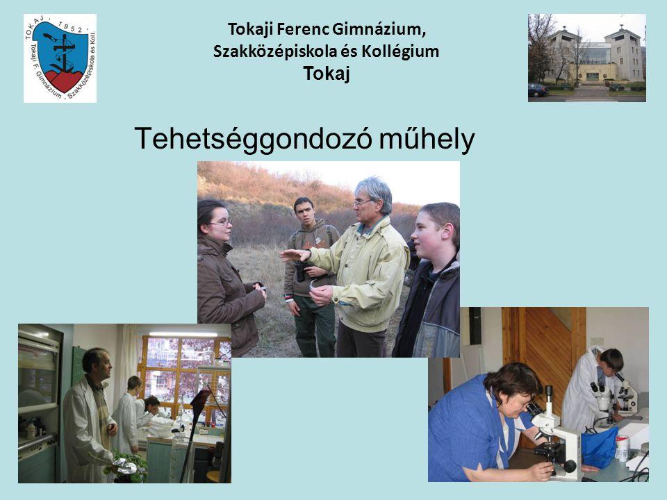 Tehetséggondozó műhely Tokaji Ferenc Gimnázium, Szakközépiskola és Kollégium Tokaj