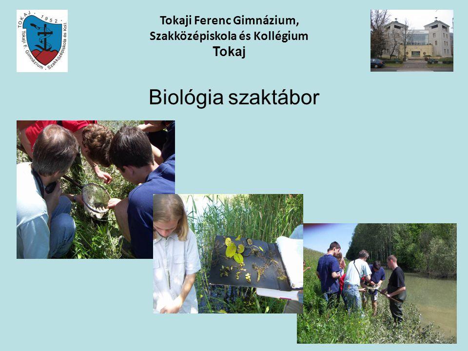 Biológia szaktábor Tokaji Ferenc Gimnázium, Szakközépiskola és Kollégium Tokaj