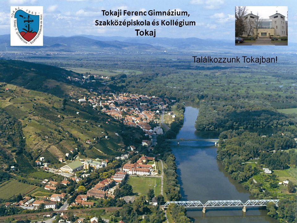 Tokaji Ferenc Gimnázium, Szakközépiskola és Kollégium Tokaj Találkozzunk Tokajban!