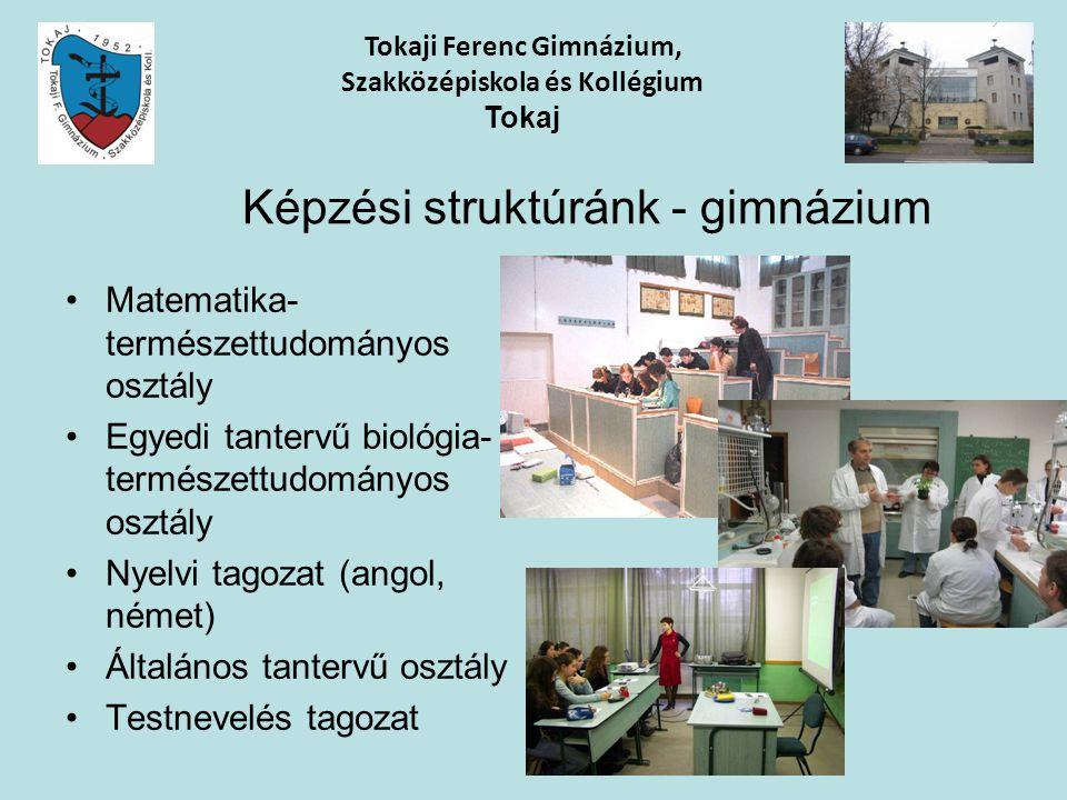 Képzési struktúránk - gimnázium Matematika- természettudományos osztály Egyedi tantervű biológia- természettudományos osztály Nyelvi tagozat (angol, n