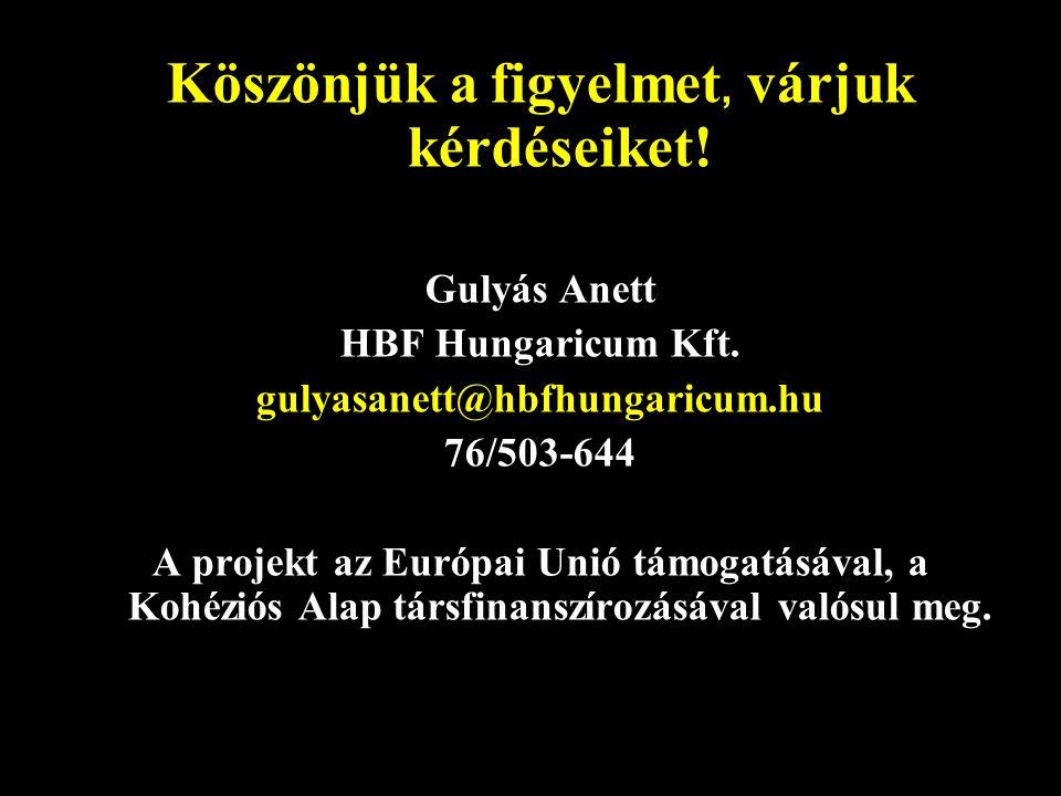Köszönjük a figyelmet, várjuk kérdéseiket. Gulyás Anett HBF Hungaricum Kft.