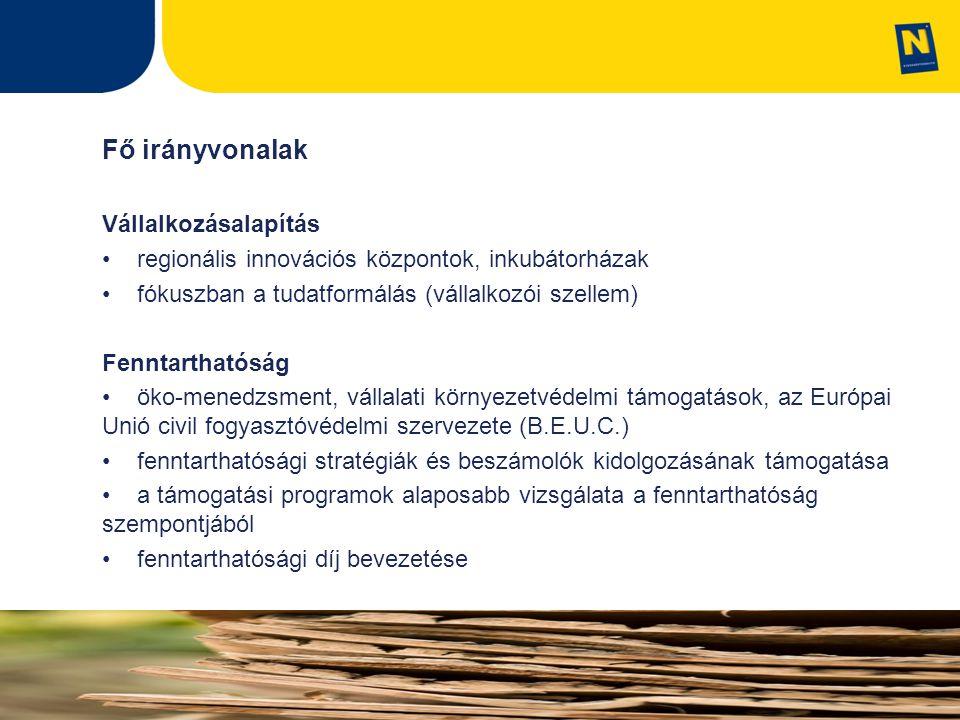 Fő irányvonalak Vállalkozásalapítás regionális innovációs központok, inkubátorházak fókuszban a tudatformálás (vállalkozói szellem) Fenntarthatóság öko-menedzsment, vállalati környezetvédelmi támogatások, az Európai Unió civil fogyasztóvédelmi szervezete (B.E.U.C.) fenntarthatósági stratégiák és beszámolók kidolgozásának támogatása a támogatási programok alaposabb vizsgálata a fenntarthatóság szempontjából fenntarthatósági díj bevezetése