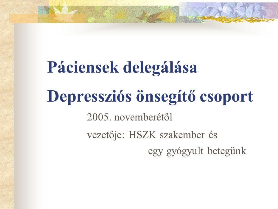 Páciensek delegálása Depressziós önsegítő csoport 2005. novemberétől vezetője: HSZK szakember és egy gyógyult betegünk
