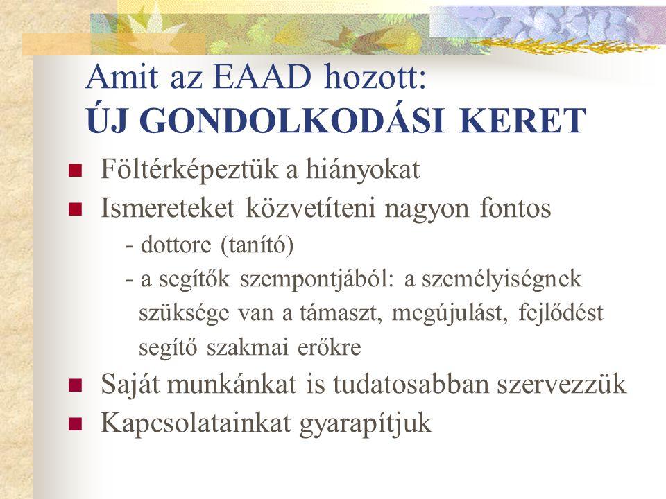 Amit az EAAD hozott: ÚJ GONDOLKODÁSI KERET Föltérképeztük a hiányokat Ismereteket közvetíteni nagyon fontos - dottore (tanító) - a segítők szempontjáb