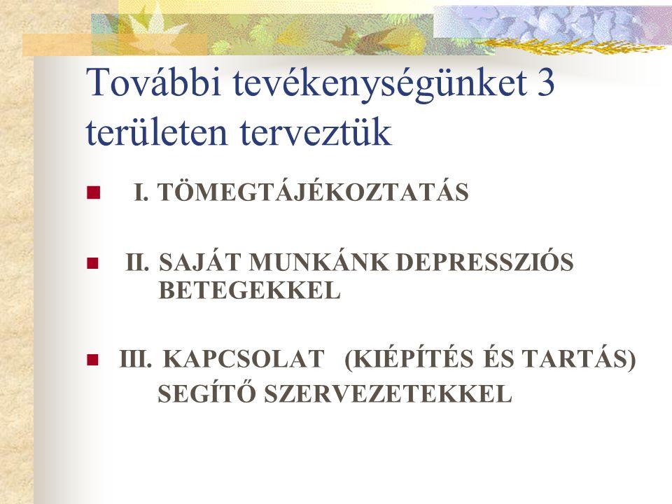 További tevékenységünket 3 területen terveztük I. TÖMEGTÁJÉKOZTATÁS II. SAJÁT MUNKÁNK DEPRESSZIÓS BETEGEKKEL III. KAPCSOLAT (KIÉPÍTÉS ÉS TARTÁS) SEGÍT