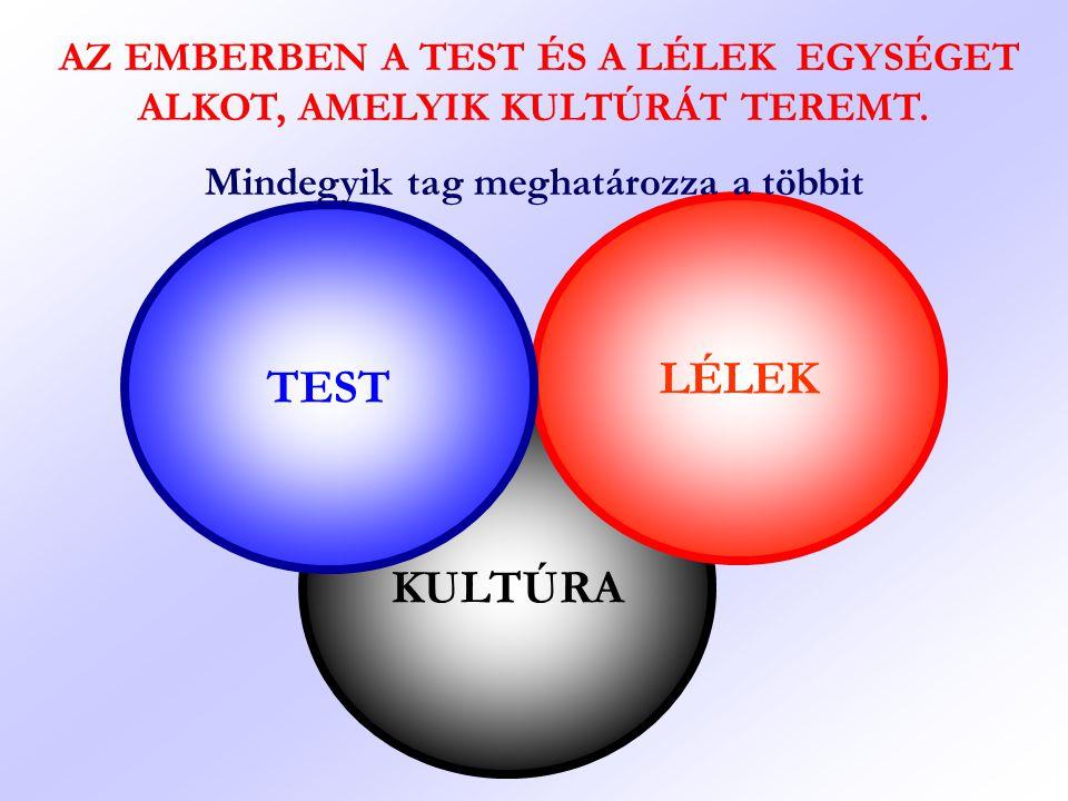 KULTÚRA LÉLEK TEST AZ EMBERBEN A TEST ÉS A LÉLEK EGYSÉGET ALKOT, AMELYIK KULTÚRÁT TEREMT. Mindegyik tag meghatározza a többit