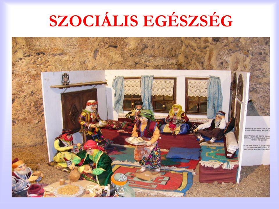 SZOCIÁLIS EGÉSZSÉG