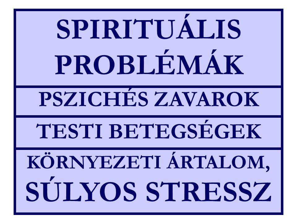 KÖRNYEZETI ÁRTALOM, SÚLYOS STRESSZ TESTI BETEGSÉGEK PSZICHÉS ZAVAROK SPIRITUÁLIS PROBLÉMÁK
