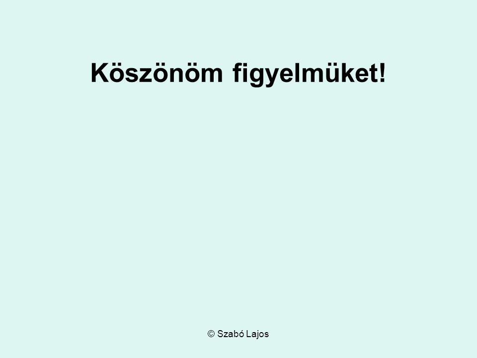 © Szabó Lajos Köszönöm figyelmüket!