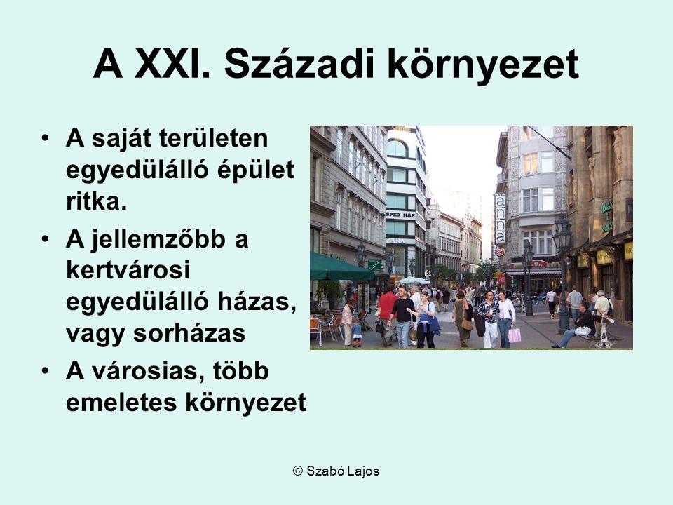 © Szabó Lajos A XXI. Századi környezet A saját területen egyedülálló épület ritka.