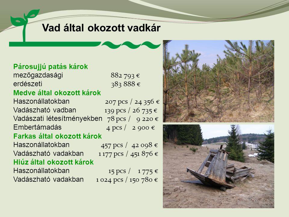 Vad által okozott vadkár Párosujjú patás károk mezőgazdasági 882 793 € erdészeti 383 888 € Medve által okozott károk Haszonállatokban 207 pcs / 24 356