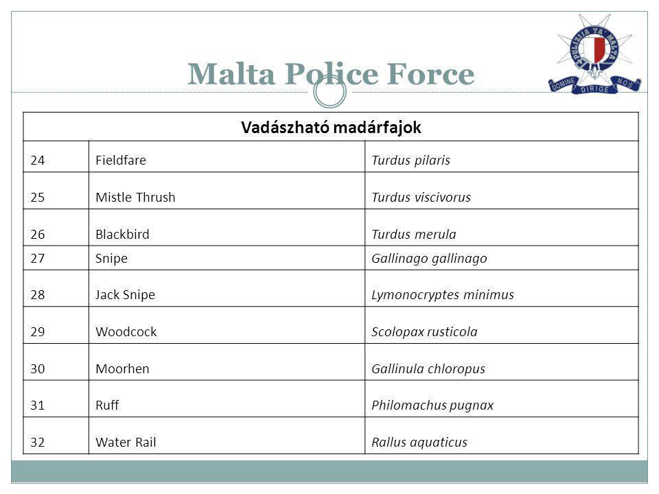 Malta Police Force Vadászható madárfajok 24FieldfareTurdus pilaris 25Mistle ThrushTurdus viscivorus 26BlackbirdTurdus merula 27SnipeGallinago gallinag