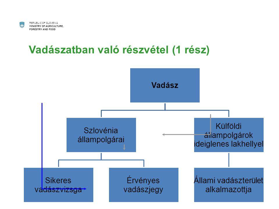 REPUBLIC OF SLOVENIA MINISTRY OF AGRICULTURE, FORESTRY AND FOOD Vadászatban való részvétel (1 rész) Vadász Szlovénia állampolgárai Sikeres vadászvizsga Érvényes vadászjegy Külföldi állampolgárok ideiglenes lakhellyel Állami vadászterület alkalmazottja