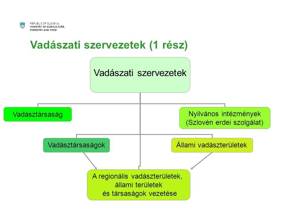 REPUBLIC OF SLOVENIA MINISTRY OF AGRICULTURE, FORESTRY AND FOOD Vadászati szervezetek Vadásztársaság A regionális vadászterületek, állami területek és társaságok vezetése Nyilvános intézmények (Szlovén erdei szolgálat) VadásztársaságokÁllami vadászterületek Vadászati szervezetek (1 rész)