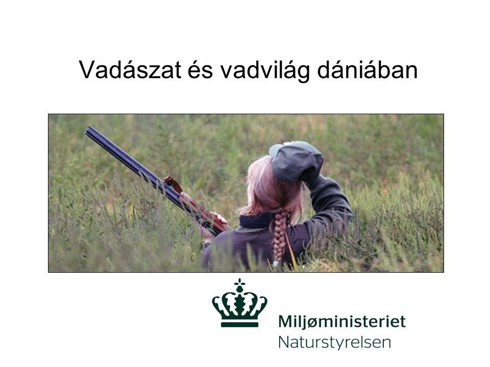 Fontos dán szervezetek Természetvédelmi minisztérium –Felelős a vadászatért és vadgazdálkodásért Dánia területén Dán természetvédelmi ügynökség –Központi adminisztráció a vadászattal és a vadvilág-megőrzéssel kapcsolatban.