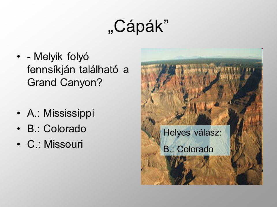 """""""Cápák - Melyik folyó fennsíkján található a Grand Canyon."""
