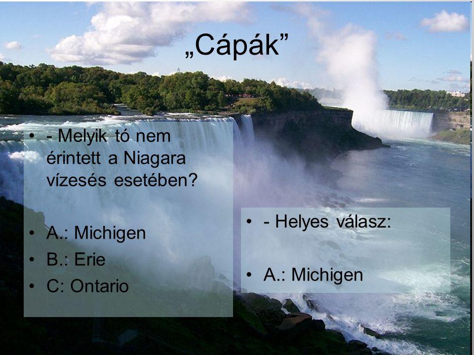 - Melyik tó nem érintett a Niagara vízesés esetében.