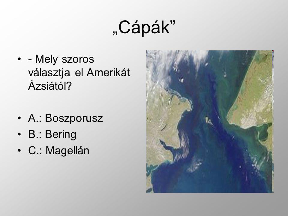 """""""Cápák - Mely szoros választja el Amerikát Ázsiától? A.: Boszporusz B.: Bering C.: Magellán"""