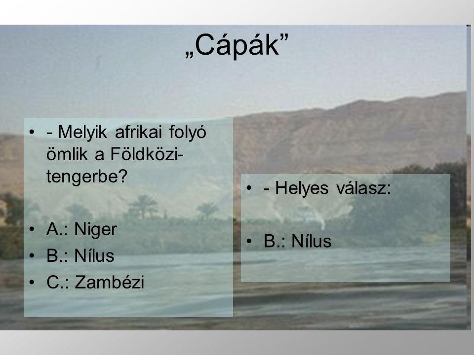 - Melyik afrikai folyó ömlik a Földközi- tengerbe.