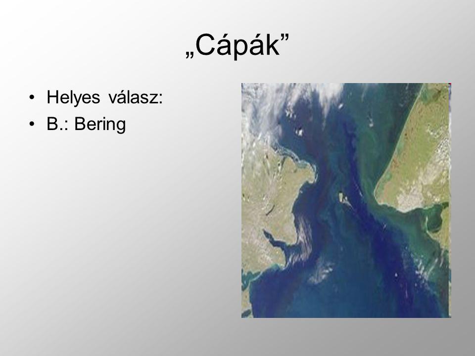 """""""Cápák Helyes válasz: B.: Bering"""