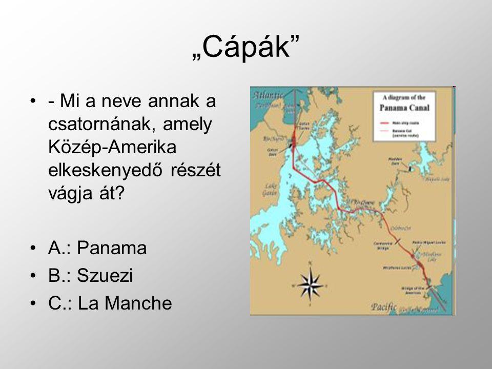 - Mi a neve annak a csatornának, amely Közép-Amerika elkeskenyedő részét vágja át.