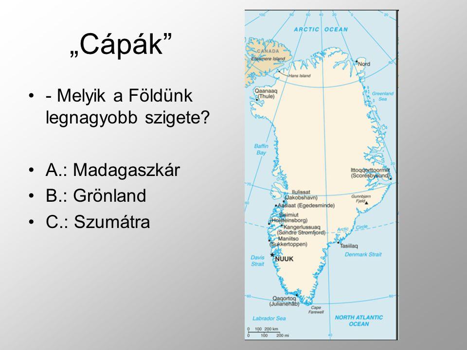 - Melyik a Földünk legnagyobb szigete? A.: Madagaszkár B.: Grönland C.: Szumátra
