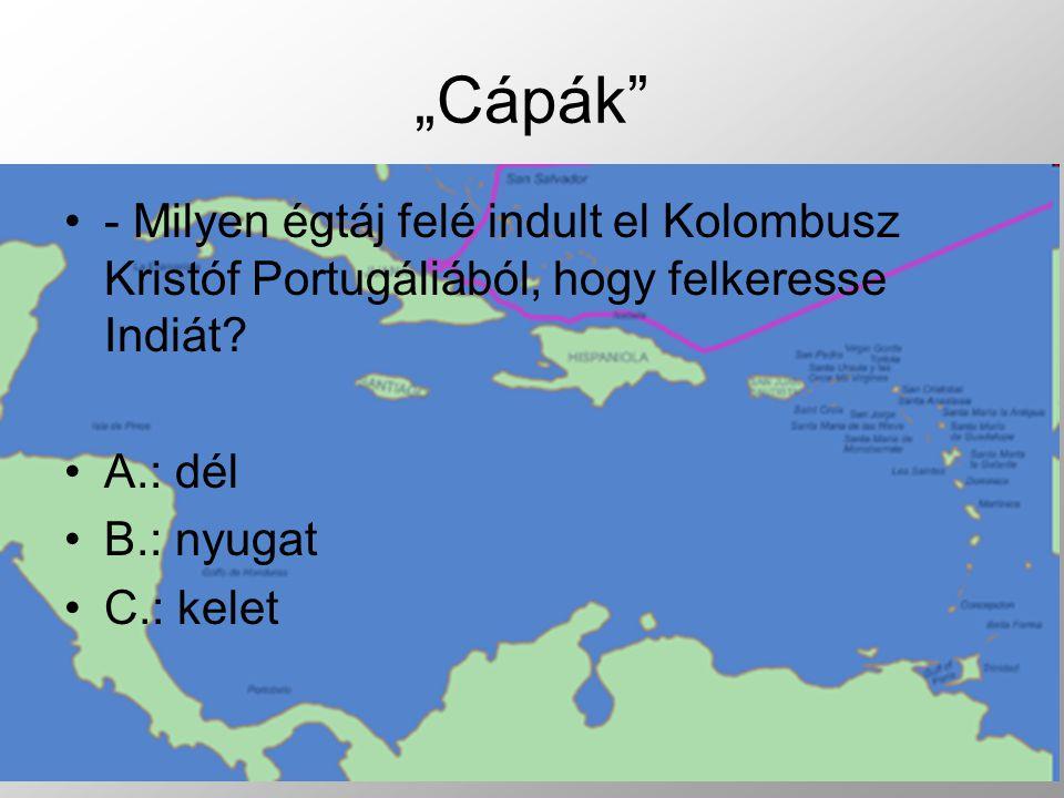 - Milyen égtáj felé indult el Kolombusz Kristóf Portugáliából, hogy felkeresse Indiát.